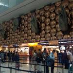 É difícil chegar na Índia?